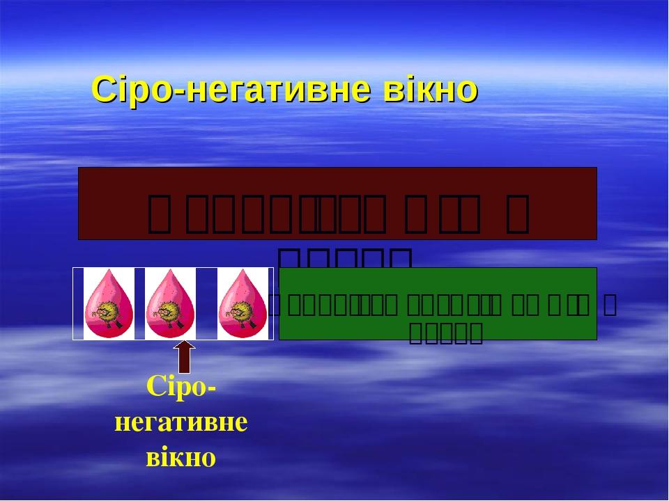 Сіро-негативне вікно Наявність ВІЛ в крові Наявність антитіл до ВІЛ в крові Сіро-негативне вікно