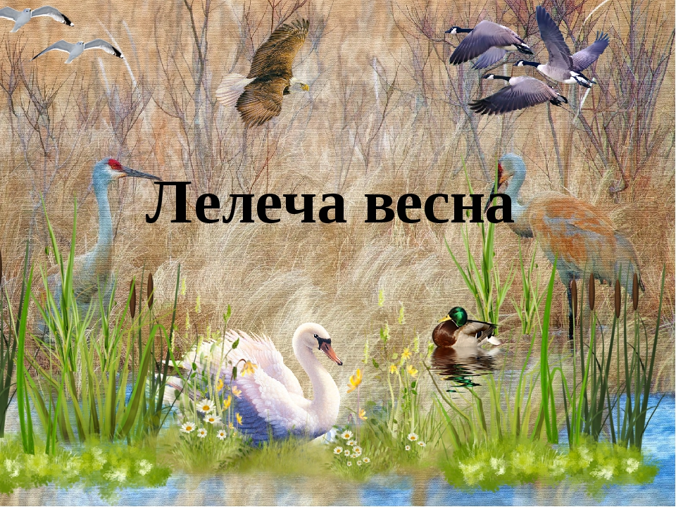 Лелеча весна
