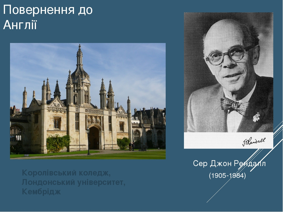 Повернення до Англії Королівський коледж, Лондонський університет, Кембрідж Сер Джон Рендалл (1905-1984)