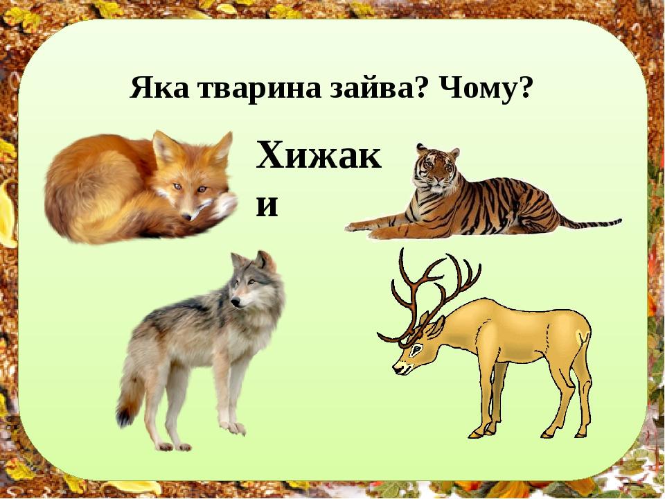 Яка тварина зайва? Чому? Хижаки