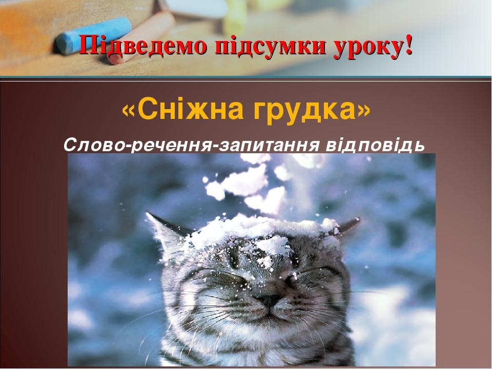 Підведемо підсумки уроку! «Сніжна грудка» Слово-речення-запитання відповідь
